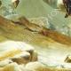 DÉTAILS  07 | Décret - Révolution Française - 1792 - Augmentation de fourrage proposée par le Ministre de la Guerre | Bonaparte franchissant le Grand-Saint-Bernard (Jacques-Louis David)