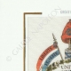 DETAILS  05 | Decree - French Revolution - 1794 - Dutch officers | Creation of the Tricolor Flag