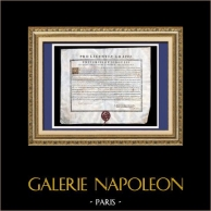 Antikt Diplom av Medicinen på Pergament - Ludvig XV Regeringstid - 1743 - Georges Lazare Berger de Charency - PRO LICENTIAE GRADU | Diplom av medicinen på Pergament daterat den 11 Februari 1743