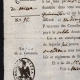 DETAILS  02 | Historical Document - First French Empire - 1809 - Nizza - Montenotte - Italy - License of Merchant