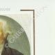 DETAILS  06   French Revolution - Journal de Paris - Thursday, July 9, 1789   Portrait of François Christophe Kellermann (1735-1820)