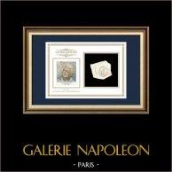 Tintenstempel - Französische Revolution - 1796 - Halbbrigade Nr.64 | Porträt von Louis Marie Marc Antoine de Noailles (1756-1804) | Fragment eines Dokuments der Zeit um 1796 geschrieben mit dem tintenstempel der Halbbrigade Nr.64 («64ème Demi-brigade»)