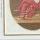 DÉTAILS  06 | Sceau de cire - Révolution Française - 1796 - 2ème Demi-brigade d'Infanterie Légère | Devise de la République Française - Égalité