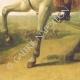 DÉTAILS  07 | Révolution Française - Journal de Paris - Mardi 25 Aout 1789 | Portrait de Napoléon Bonaparte, Premier Consul (Baron Antoine-Jean Gros)