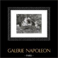 Schloss Versailles - Château de Versailles - Garten - Grotten von Apollo - Grottes d'Apollon | Original heliogravüre. Auszug der Sammlung Versailles et les Trianons. 1920