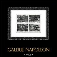 Château de Versailles - Collection de Carosses - Traineau de Marie-Antoinette