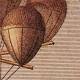 DETAILS 04   Hot-air Balloon - Airship - Dirigible - Harris - Dupuis Delcourt - Green (1824-1836)