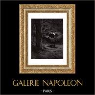 Fables de La Fontaine - Le Renard et les Poulets d'Inde (Gustave Doré) | Gravure sur bois originale dessinée par Gustave Doré, gravée par H. Pisan. 1868