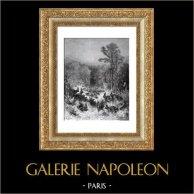 Fables de La Fontaine - Les Lapins (Gustave Doré)   Gravure sur bois originale dessinée par Gustave Doré, gravée par C. Laplante. 1868