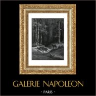 La Fontaines Fabeln - Der Wolf und der Jäger (Gustave Doré) | Original holzstich gezeichnet von Gustave Doré, gestochen von Pannemaker - Doms. 1868