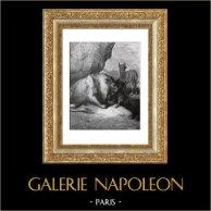 Favole di La Fontaine - Il Leone, il Lupo e la Volpe (Gustave Doré) | Incisione xilografica originale disegnata da Gustave Doré, incisa da Hildibrand. 1868