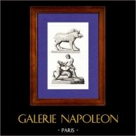 Gallia - Dei Galli - Ercole - Eracle - Massacre - Cervo - Cinghiale | Incisione su acciaio originale disegnata da Muret, incisa da Th. Blanchard. 1845