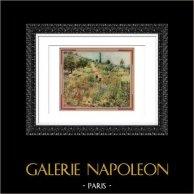 Paesaggio - Chemin Montant dans les Herbes (Auguste Renoir)