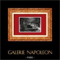 Veduta di Napoli - Villa Reale - Fonte - Sorgente - Campania (Italia) | Incisione xilografica originale disegnata da A. Closs. 1877