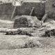DÉTAILS 02 | Vue de Biskra (Algérie) - Afrique - Zibans - Oasis - Archéologie