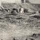 DÉTAILS 04 | Vue de Biskra (Algérie) - Afrique - Zibans - Oasis - Archéologie