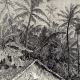 DETAILS 01 | Malaysia (Asia) - Dwellings of Negritos - Indigenous people - Nomads - Hunters