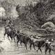 DÉTAILS 02 | Afrique  du Sud - Guerre Anglo Néerlandaise - Guerre des Boers
