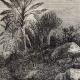 DÉTAILS 03 | Afrique  du Sud - Guerre Anglo Néerlandaise - Guerre des Boers