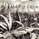 DETAILS 01   (Algeria) - Assault of Algieria (1830) - French conquest of Algeria