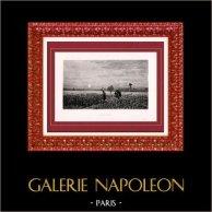 Pintura - Mostra 1888 - Adrien Demont (1851-1928) - Oeillettes
