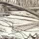 DÉTAILS 03   Îles Fidji - Îles Viti - Armes et Ornements - Vanuatu - Habitant de Malekula