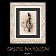 Napoleonisk Soldat - Uniform - Husar - Hussard - Kavalleri (Emile de Sainzec) | Original vattenfärgmålning på pappers av Emile de Sainzec. 1985