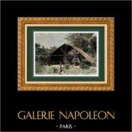 Habitation d'Indiens Galibi - Amérindiens - Fleuve Maroni   Gravure sur bois originale dessinée par A. Pâris. Aquarellée à la main. 1894