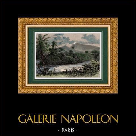 Vue du Mont Cameroun (Cameroun - Afrique de l'Ouest) | Gravure sur bois originale dessinée par Taylor, gravée par Kohl. Aquarellée à la main. 1888