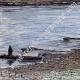 DETAILS 03 | View of Dniester River - Eastern Europe (Ukraine - Moldavia)