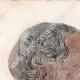 DÉTAILS 01   Egypte Antique - Cercueil et têtes de momie (Egypte)