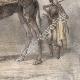 DÉTAILS 06 | Chameaux et Dromadaires sellés pour le transport des voyageurs (Egypte)