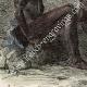 DÉTAILS 03 | Diour - Groupe ethnique - Soudan (Afrique du Nord)