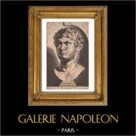 Statua - Busto di Nerone (37-68) - Impero romano | Incisione acquaforte originale secondo Rubens incisa da P. Pontius. 1638