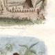 DÉTAILS 05 | Îles Tonga - Kava sur la Plage de Namouka - Scène de Pugilat - Boxeur - Lutteur