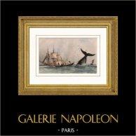 Pesca alla Balena - Arpione - Barca - Battello | Incisione su acciaio originale disegnata da Morel, incisa da Rouargue. Acquerellata a mano. 1837