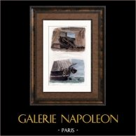 Battaglia Navale - Battello - Barca a vela - Nave - Cannone 12 - Pesca al Pescecane | Incisione su acciaio originale disegnata da Morel , Garneray, incisa da Desjardins. Acquerellata a mano. 1838