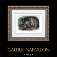 Alperna - Simplonpasset - Napoleon Bonaparte | Original trästick efter teckningar av Pisan. Akvarell handkolorerad. 1850