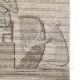 DÉTAILS 06 | Vue de Rosette - Rachid - Foueh (Egypte) - Bas-reliefs à Thèbes