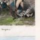 DETAILS 05   Death of Dougados (1793) - Spanish Army - Carabinier