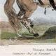 DÉTAILS 02 | Armée Autrichienne - Uniforme Militaire - 1793 - Costumes de femmes - Hollande - Pays-Bas - Gueldre - Frise