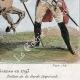 DÉTAILS 05 | Armée Autrichienne - Uniforme Militaire - 1793 - Costumes de femmes - Hollande - Pays-Bas - Gueldre - Frise
