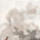 DÉTAILS 01 | Guerres napoléoniennes - Campagne de France - Bataille de Méry-sur-Seine (22 février 1814) - Champagne-Ardenne