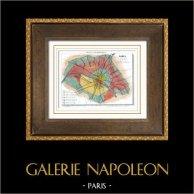 Antique map of France - 1881 - Paris et son Mur d'Enceinte