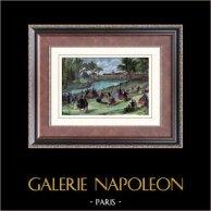 Vista di Parigi - Jardin d'Acclimatation nel 1855 - Parco - Giardino Zoologico - Menagerie (Francia) | Incisione xilografica originale. Anonima. Acquerellata a mano. 1880