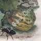 DETAILS 06 | Melon - Insects - Melophagus