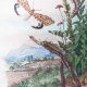 DETAILS 03   Insects - Locust - Grasshopper - Butterfly - Lithosies - Lixe