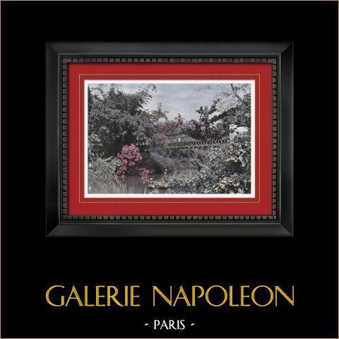 Jardin en Pointe de Galles (Ceilán - Sri Lanka) | Original fotocromo grabado grabado por Gillot. 1890