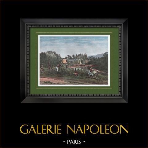 Vue de Canala (Nouvelle-Calédonie - France) | Gravure en photochromie originale gravée par Gillot. 1890