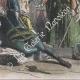 DÉTAILS 04   Tentative d'assassinat de Olivier V de Clisson (13 juin 1392)